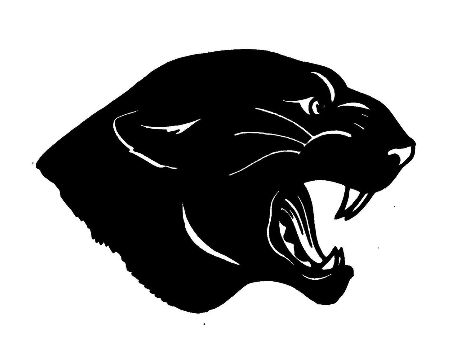 Granville High School Mascot the Panthers